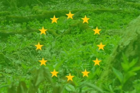 Green New Deal for Europe – Europäische Lösungsansätze gegen den Klimawandel